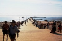 Draugystės tiltas – dienai. Palangos tiltas vilios visą sezoną