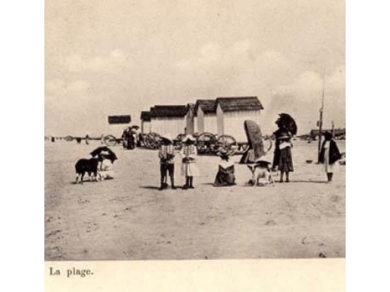 F. Tiškevičiaus laikais paplūdimys buvo įrengtas pagal geriausius užsienio pavyzdžius.