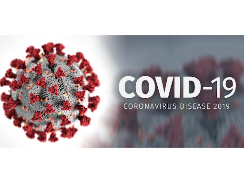 COVID-19 užsikrėtusiųjų keliai siekė ir Palangą