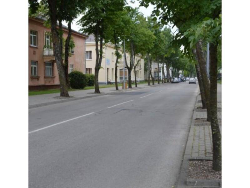Vytauto gatvėje numatyta automobilių srautą nukreipti vienpusiu eismu, tačiau aktyvūs palangiškiai šiame sprendime įžvelgia daug spragų.