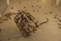 A. Mončio muziejuje – skulptoriaus A. Kasparavičiaus paroda