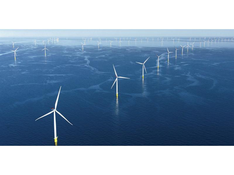 """Dėl vėjo elektrinių jūroje ties Palanga meras Š.Vaitkus kreipėsi į valstybės vadovus: """"Grafas Tiškevičius jūros tiltą statė ne tam, kad žiūrėtume į vėjo malūnus"""""""