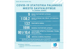 Palangoje ketvirtadienį – 9 COVID-19 atvejai, 132 palangiškiai dar serga