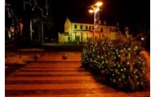 Kalėdoms besirengianti Palanga: tokios eglės Lietuva dar nematė