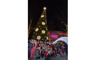 """Šiandien – Kalėdų eglės įžiebimo fiesta Palangoje, rytoj – """"Gintarinė snaigė"""", o eglė sužaižaruos ir Šventojoje"""