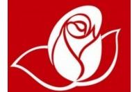 Trys socialdemokratai įsteigė Centro grupę LSDP Palangos skyriuje