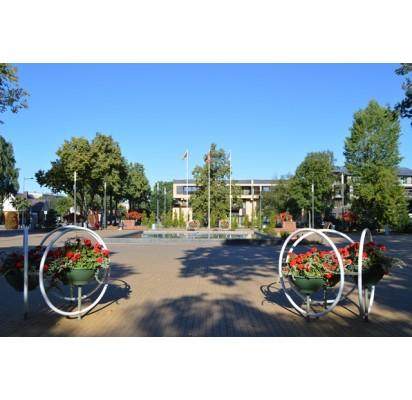 Fontanas ir linksma nuotaika- svečiams, vietiniams- apdergti kiemai