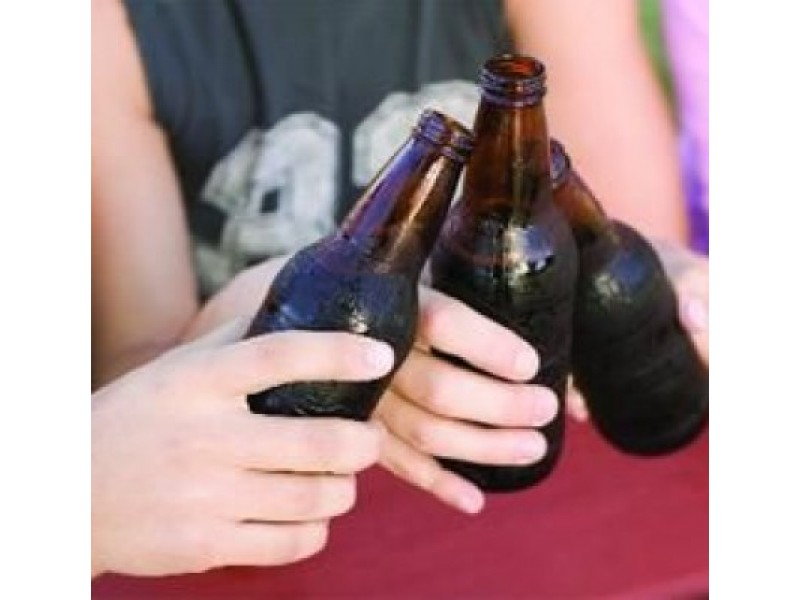 Palyginti su 2012 m., moksleiviai Palangoje vartoja 2,8 proc. mažiau alkoholinių gėrimų. Palangos PK nuotr.