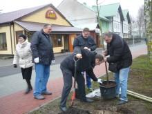 Virbališkės take Tarybos nariai šeštadienį sodino medelius.
