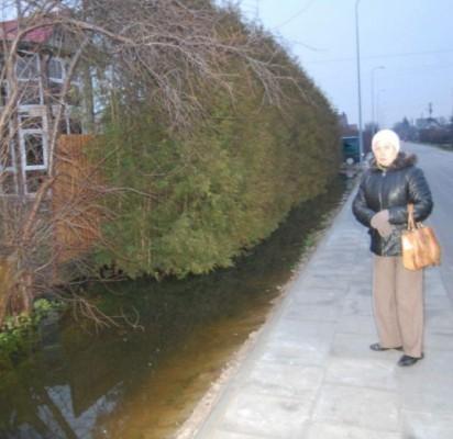 Po 280 tūkst. litų investicijų – patvinę sodai