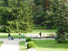 Šiuo metu parkas užima apie 101,3 ha plotą, iš jų medynai – 60 ha, pievos – 24,5 ha, gėlynai – 0,5 ha, vandens telkiniai – 1,16 ha.