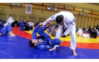 Brazilų džiu-džitsu savaitgalyje Palangoje- brazilų legendos pamokos