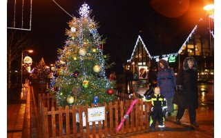 Palangos J. Basanavičiaus gatvėje suspindo Kalėdų eglių alėja