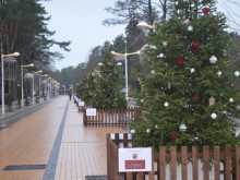 Kalėdinių eglučių alėja kai kurių verslininkų nebedomina.