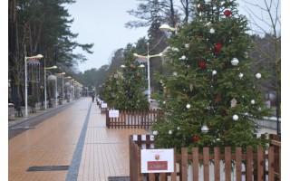 Ar Palangai, kaip Kalėdų šviesos miestui, dar trūksta šviesos?