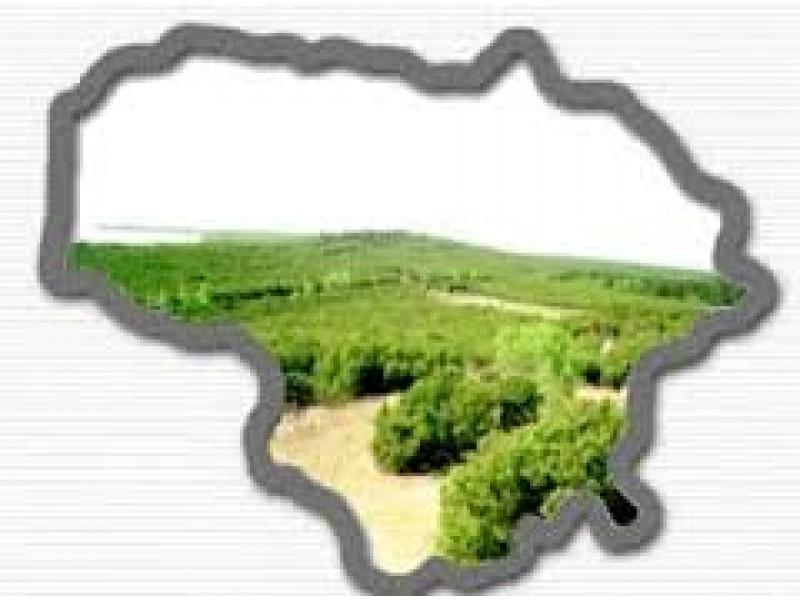 Didžiausia mokėtina suma už gyventojo žemės sklypą (kitos paskirties) Palangoje siekia 43,6 tūkst. litų. Nuotr. iš www.silutesetazinios.lt