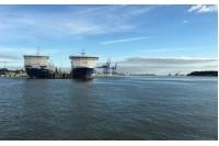 Klaipėdos uostas atmeta kaltinimus dėl taršos Kuršių mariose, alavo randama ir Palangoje
