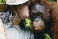 Žymiausia pasaulyje orangutangų tyrinėtoja neaplenkia ir Palangos