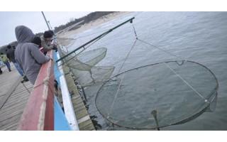 Ant Palangos tilto žvejojusiam žvejui skirta 45 eurų bauda: neturėjo žvejybai kortelės