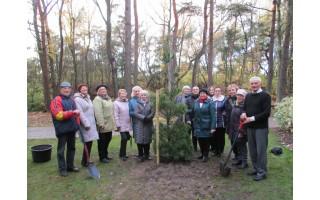 Lietuvai pagražinti draugija Žemaitijos metus pažymėjo ilgamečių augalų sodinimu
