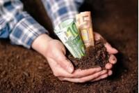 6 108 palangiškis iki lapkričio 15 d. turi sumokėti žemės mokestį