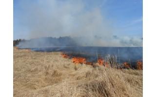 Palangos priešgaisrinė gelbėjimo tarnyba įspėja nedeginti žolės