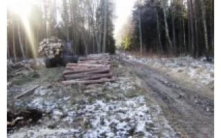 Išduotas statybos leidimas Palangos aplinkkeliui tiesti