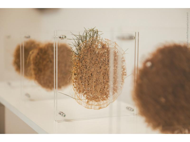 """Šeštadienį, rugsėjo 4 dieną, 18 val. """"Ramybės"""" galerijoje Palangoje atidaroma menininkių Editos Sabockytės-Skudienės ir Alevtinos Ščepanovos paroda """"Sukurta planetoje Žemė"""""""