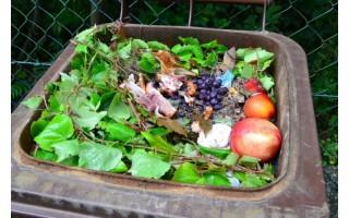 Tvarkyti žaliąsias atliekas- trys būdai