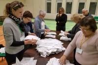 Seimo nario mandato savininkas paaiškės po dviejų savaičių