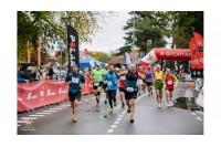Ar Palangai reikia SAVO maratono?