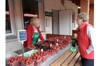 Lietuviškos braškės turguje jau atpigo, bet jų pirkėjų antplūdžio nėra