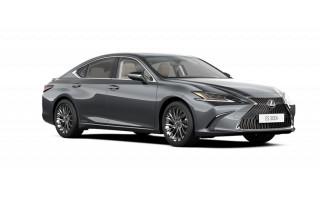 "Palangos kelyje prabangus ""Lexus"" skriejo net 188 km/val. greičiu"