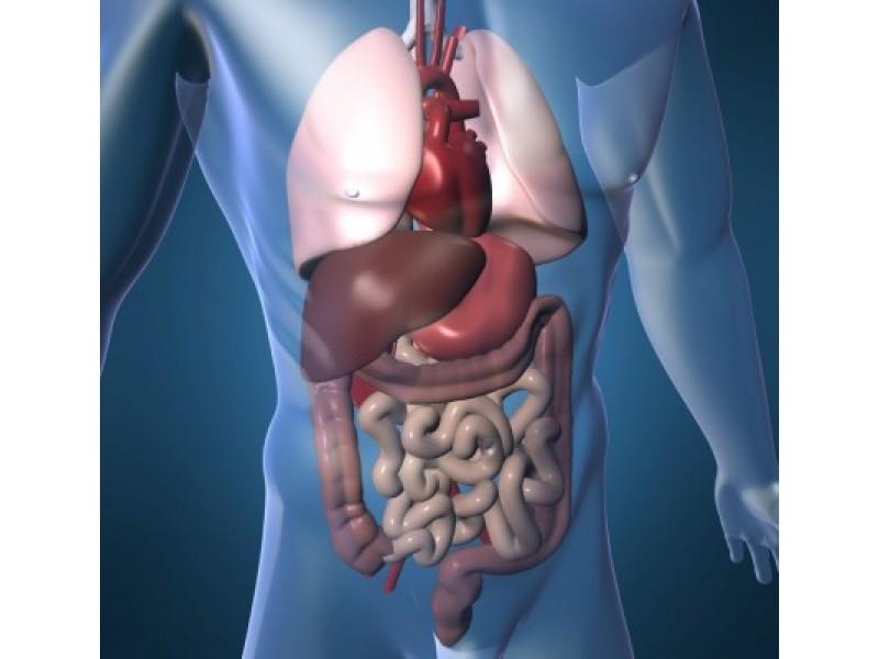 Kuo pavojingas persivalgymas ir virškinimo sutrikimai?
