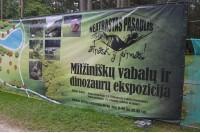 Už milžiniškus vabalus – pyla direktoriui, verslininkas svarsto palikti Lietuvą