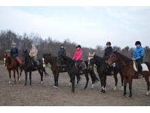 """Paskutiniojo gruodžio penktadienio treniruotė """"Zigmo žirgų"""" žirgyne."""