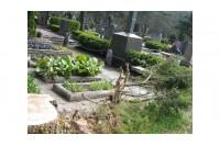 Giltinei sparčiai šienaujant palangiškius, jau po pusantrų metų prireiks naujų kapinių