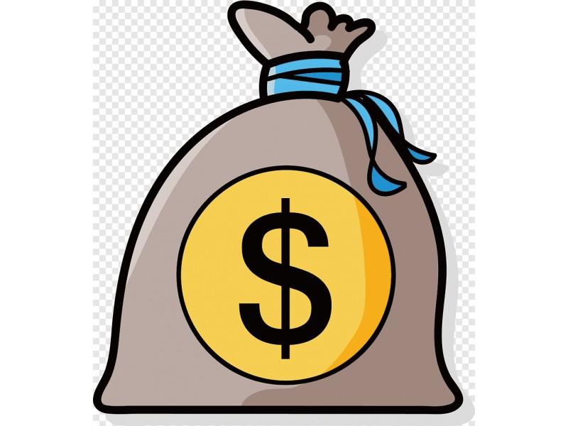 """Palangos """"pirmasis blynas"""" įtraukti vietos bendruomenes į biudžeto pinigų skirstymą """"prisvilo"""""""