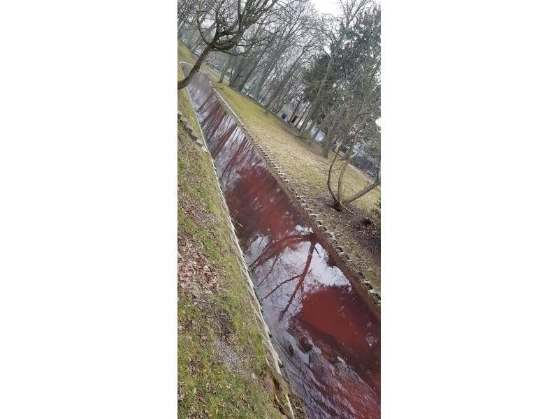 Kodėl Rąžės upelis Palangoje nusidažė raudona spalva?