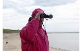 Palangos gelbėtojai siūlo naujovę – maudynes... siaučiant jūrai