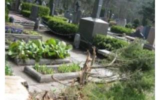 Artimiausi giminaičiai susiriejo dėl šeimos kapo padalijimo