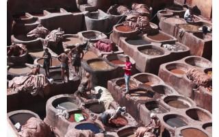 Niekur nemačiau tokių žiaurių vaikų kaip Maroke
