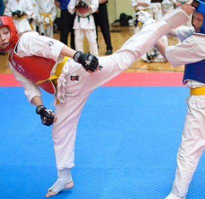 """Karate kyokushin mokykla """"Shodan""""-  nugalėtojai"""