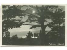 Palanga. Siluetai. Fot. I. Stropus, 1936 m.