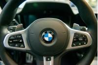 Kas niokoja BMW automobilius Palangoje?