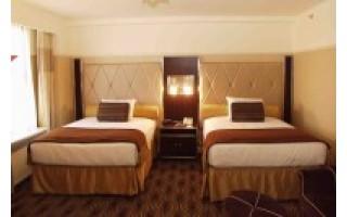 Alkaniems viešbučiams ir 100 litų – dideli pinigai
