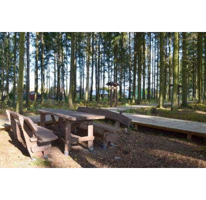 Poilsio zonos miškuose – atviros visuomenei