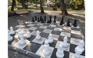 Šachmatų lentos nuostoliai: dvi figūros dingo, dvi sulaužytos