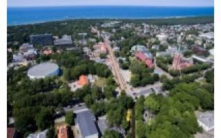 Seniūnaičio rinkimai Kunigiškėse – tarsi varžytuvės į Seimą