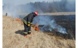 Už žolės deginimą piliečiai gali būti nubausti nuo 57 iki 289 eurų bauda